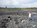 overzicht groeve, kring Fryslân