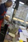 Dhr Wiedt prepareert een fossiele vis