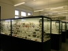 Museum Claustahl-Zellerfeld
