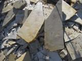 plaat uit groeve bij Solnhofen,