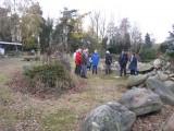 Jan Bakker in zijn stenentuin