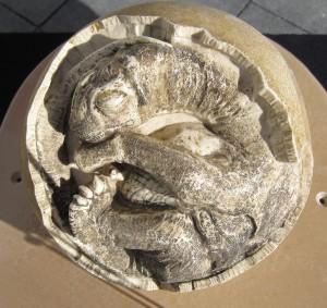 dinosaurus ei replica kring Fryslân