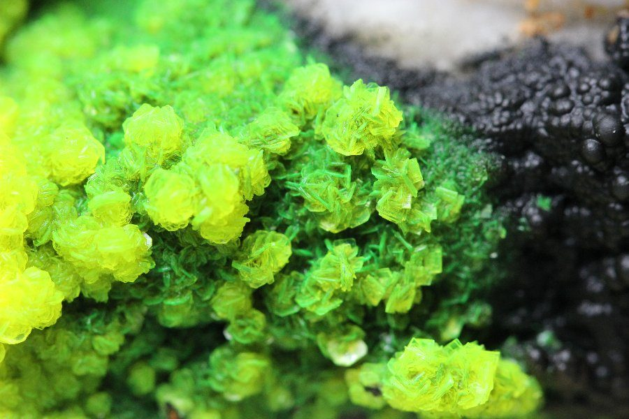 Autunite en Torbernite